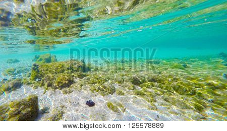 a sandy seabed in Sardinia in Italy