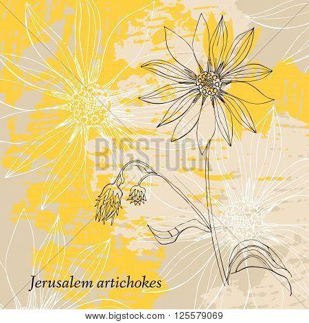 Hand drawn Jerusalem artichokes flower. Vintage card on grunge yellow background. Vector illustration.