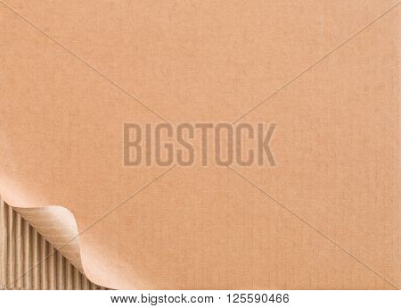 Corrugated cardboard with curled border of top layer