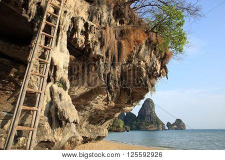 closeup of bamboo ladder on rockwall at seaside