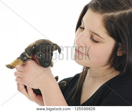 Close-up image of a pretty teen girl happily holding her tiny new puppy.  On a white background.