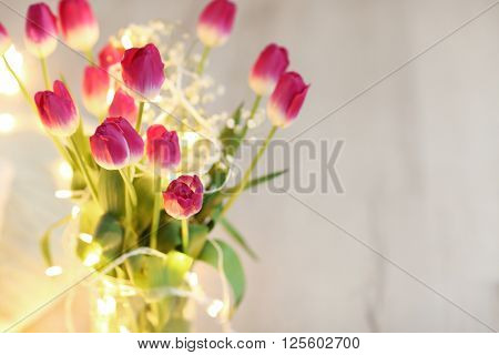 Tulips on blurred background