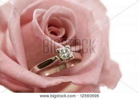 Diamond Ring in a Rose.Sepia toned.