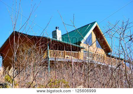 Mountainside Cabin Seen from the Brush Below