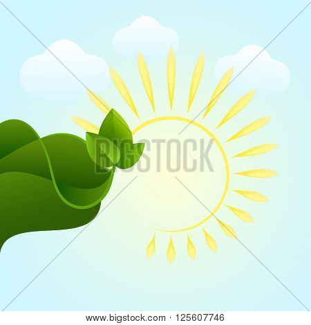Abstract summer vector background with sun and green leaf.