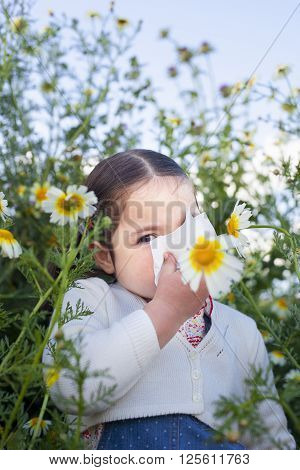 4 year old toddler girl sneezing in a daisy meadow. She is allergic to flowers
