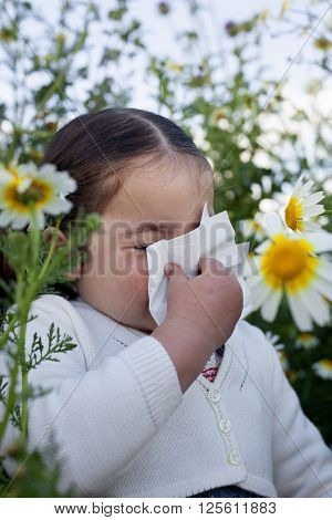 4 yeard old toddler girl sneezing in a daisy flowers meadow. She is allergic to flowers
