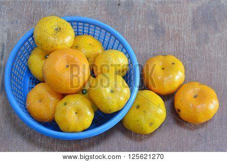 navel orange on the blue plastic basket