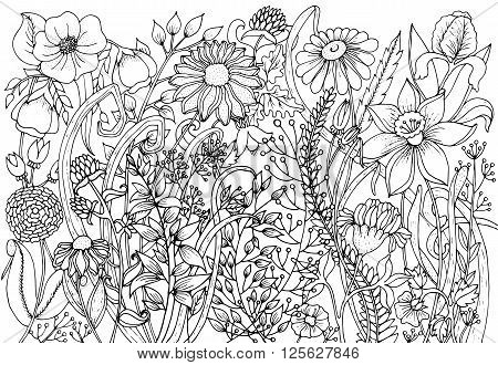 Hand drawn background with doodles flowers leaves. Nature design for relax meditation. Vector pattern black and white illustration can be used for coloring book pages for kids and adults.