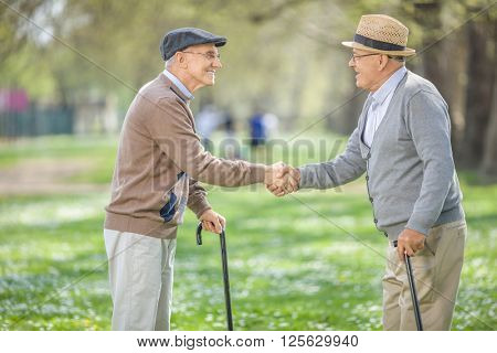 Two old friends meeting in park and shaking hands on a beautiful spring day