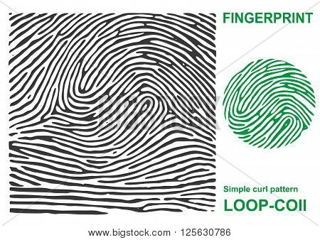 Fingerprint shape. Black fingerprint. Fingerprint secure. Fingerprint identification. ID fingerprint. Fingerprint pressure. Fingerprint vault. Vector Fingerprint.