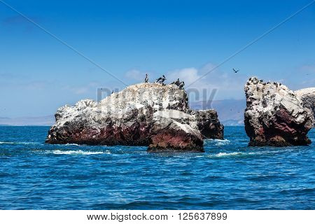 ocean, island and pelicans on a sunny day