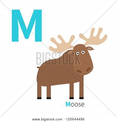 Letter M Moose Zoo alphabet. English abc with animals Education cards for kids Isolated White background Flat design Vector illustration illustration