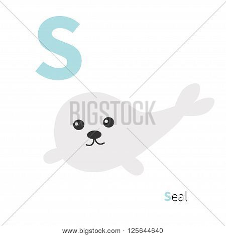 Letter S Seal Zoo alphabet. English abc with animals Education cards for kids Isolated White background Flat design Vector illustration