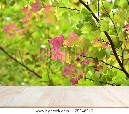 Empty wood material background for product display.