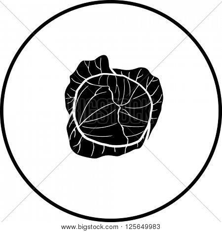 cabbage symbol