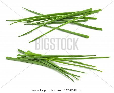 Double scallion spring onion bunch isolated on white background as package design element