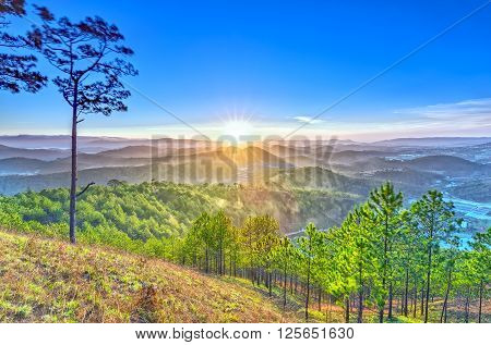 Sun star in Da Lat plateau with golden rays radiating down the sunny valley of pine forest, sunrise is beautiful as this place peaceful and serene.