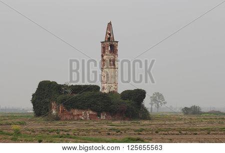 rice crops church in ruin Casaleggio Italy
