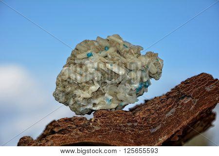 Cavansit on Stilbit   on tree bark against a blue sky