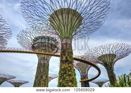 Beautiful Singapore Gardens By The Bay