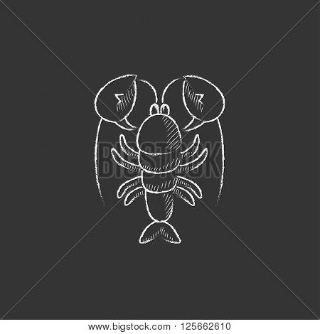Lobster. Drawn in chalk icon.
