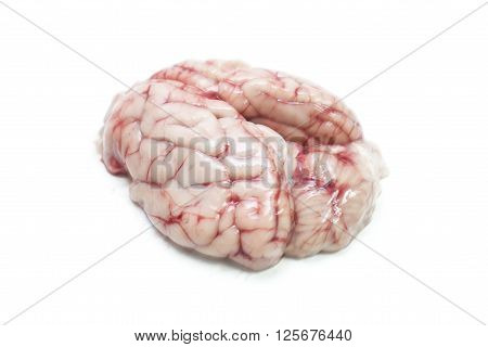 Pink pig brains isolated on white background.
