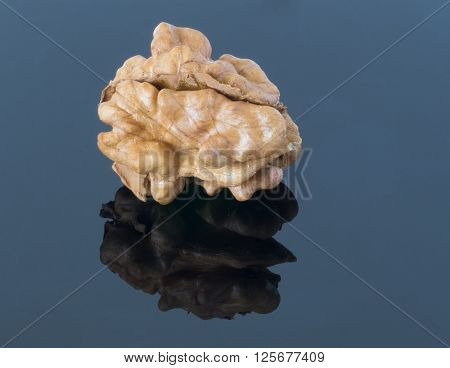 Walnut kernel on a dark background. With reflection in the foreground