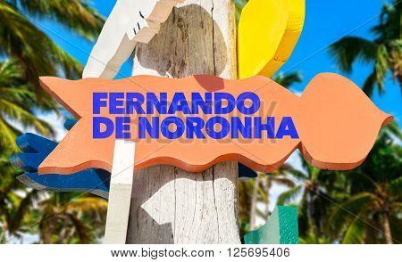 Fernando de Noronha signpost with palm trees