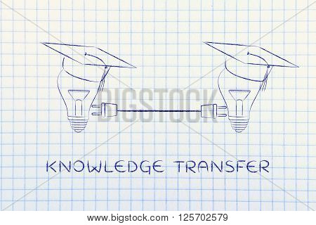 Lightbulbs With Graduation Cap With Plug, Knowledge Transfer
