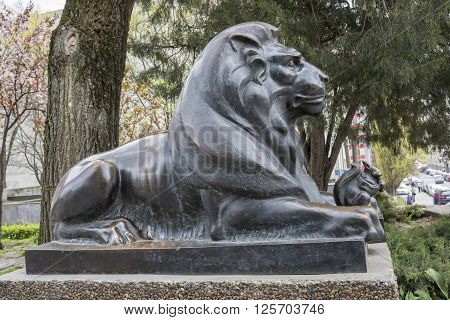 ROSTOV-ON-DON RUSSIA- APRIL 11- Lion guarding the