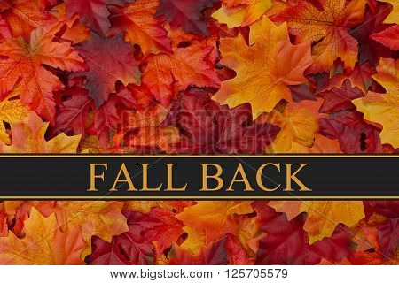 Fall Back Time Change Message Fall Leaves Background and text Fall Back