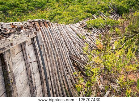 Ribs of an abandoned fishing boat in Prince Edward Island