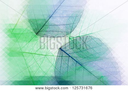 Decorative skeleton leaves, abstract background