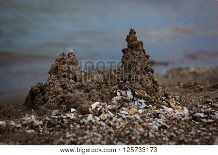Sandcastles and shells scattered on the beach