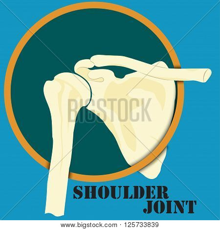 Human shoulder joint medicine clinic symbol design spine diagnostics center flat design vector