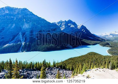Peyto Lake, Banff National Park, Rocky Mountains, Alberta, Canada