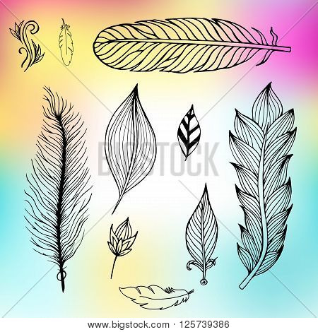 Set of hand drawn feathers on the mesh background. Vector illustration.
