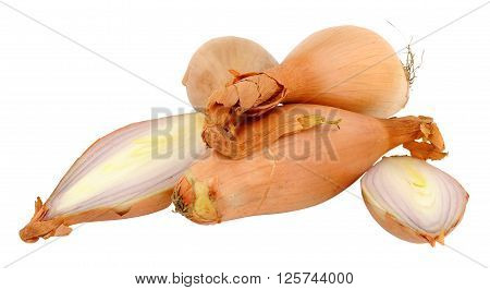 Group of echalion shallots isolated on a white background