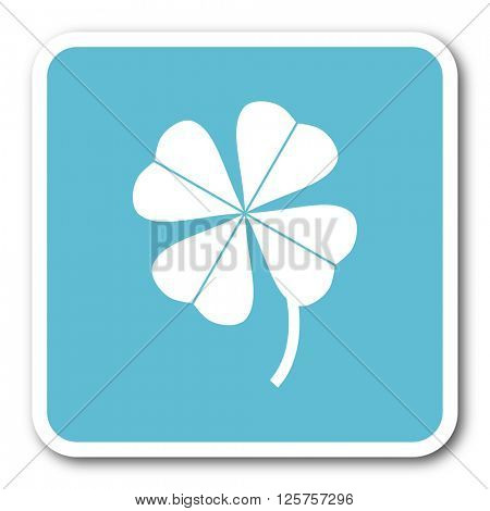 four-leaf clover blue square internet flat design icon