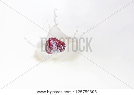 Fresh strawberry falling down to splashing milk