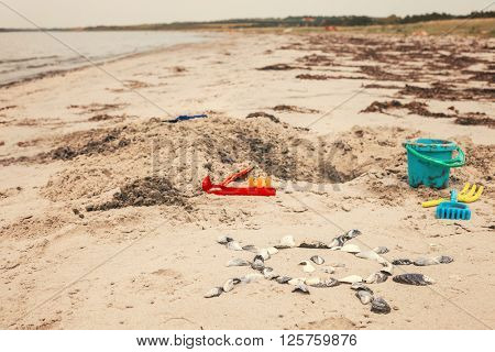 Hole in sand and toys with scallop on beach