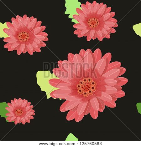 gerber flowers seamless on a dark. vector illustration