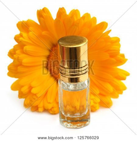 Closeup of calendula with essence bottle over white background