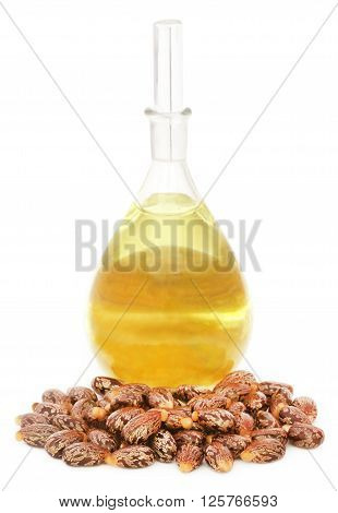 Castor oil with beans over white background