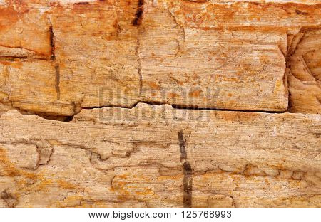 Close up of Sedimentary rock as a background