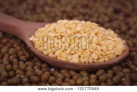 Close up of dry mung bean in wooden spoon