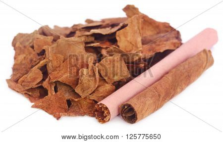 Rolled and dry tobacco over white background