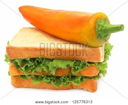 Bread slices with banana pepper and green lettuce inside over white background