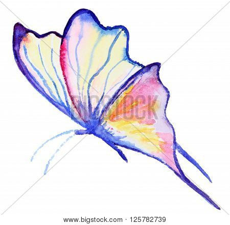 Abstract Watercolor hand drawn purple butterfly. Hand painted watercolor butterfly in Hires.  Perfect for wedding invitations, greeting cards, quotes, blogs, posters and logo.